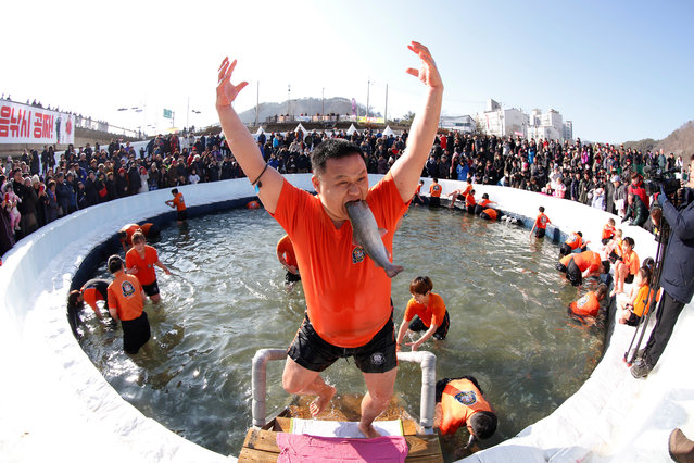 """A festival visitor celebrates after attending bare hand fishing in a frozen river during the Hwacheon Sancheoneo Ice Festival at Hwacheon-gun in Gangwon province, South Korea, 05 January 2019. The festival runs under the slogan """"Unfrozen Hearts, Unforgettable Memories"""" from 05 to 27 January 2019. (Photo by Jeon Heon-Kyun/EPA/EFE)"""