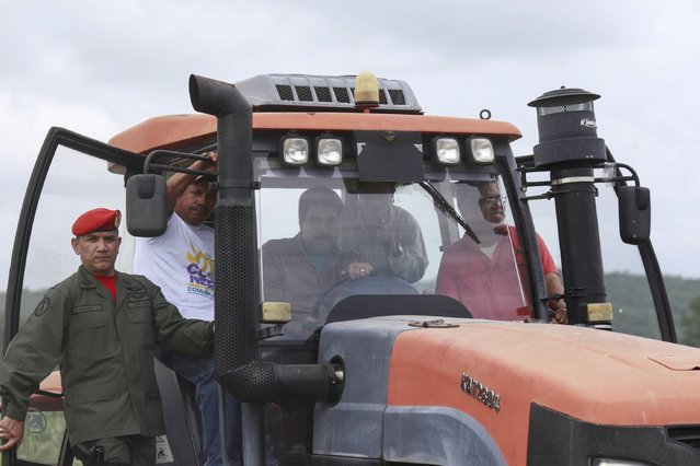 Venezuela's President Nicolas Maduro (C) drives a tractor, during his visit to a corn plantation in the state of Cojedes, in this handout picture provided by Miraflores Palace on August 12, 2015. (Photo by Miraflores Palace/Reuters)