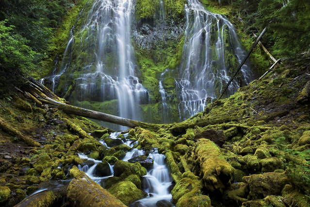 """Proxy Falls, Oregon"". Proxy Falls cascade down towards the moss-covered forest of Three Sisters Wilderness in Oregon. The photographer, Thomas Goebel, is 18 years old. (Photo by Thomas Goebel/Smithsonian Wilderness Forever Photo Contest)"