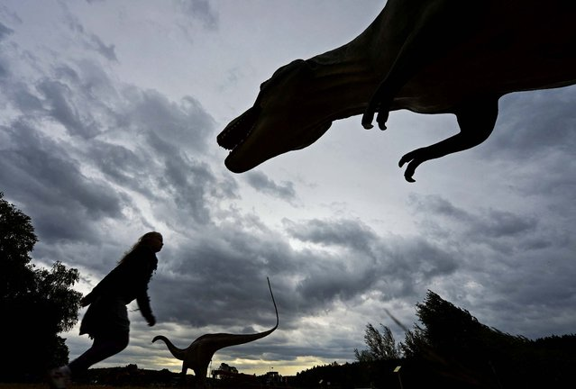 """A child walks between the dinosaurs in the exhibition """"World of Dinosaurs"""" in Hohenfelden near Erfurt, Germany, on September 25, 2012. The exhibition shows 65 models of 56 species of dinosaurs. (Photo by Jens Meyer/Associated Press)"""