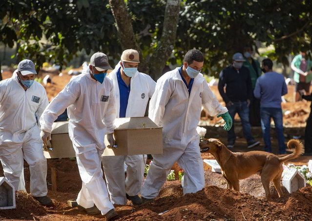 Cemetery workers in protective clothing carry the coffin of a COVID19 victim for burial at the Vila Formosa cemetery in Sao Paulo, Brazil, Wednesday, May 20, 2020. (Photo by Andre Penner/AP Photo)