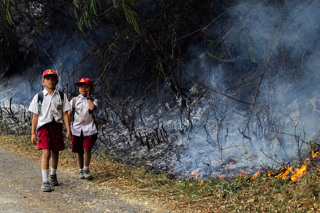Anak muda Indonesia watched the forest land with fires burning hills of Lake Toba, as seen in Simalungun District on August 22, 2016, Province North Sumatra, Indonesia. The cause of fire was allegedly induced the people who burn land so that new weeds grow fodder, estimated thousands of hectares of forest land overgrown with pine trees and weeds in the mountains in the region on fire covering Sub Sitio-tio, Harian, Sianjurmula Mula, and Simanindo. This fires is also referred to as the worst over the last ten years. Said the head of regional disaster response agencies, Jaingot Banjarnahor. (Photo by Ivan Damanik/ZUMA Press/Splash News)