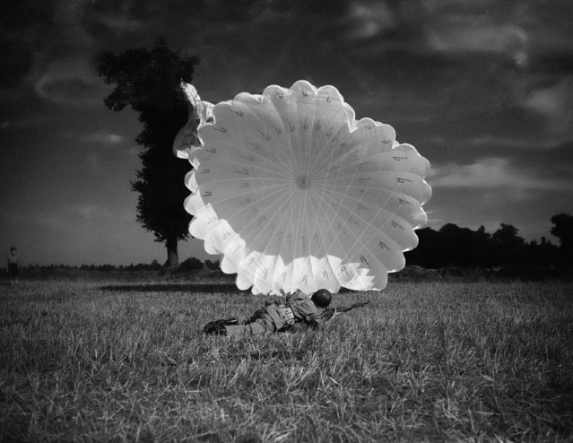 A paratrooper has just landed and has his rifle ready for action as he spills the wind from his parachute in Britain, September 18, 1942. (Photo by AP Photo)