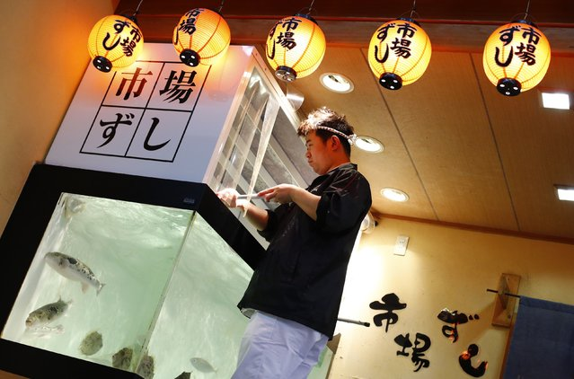 A man cleans a fish tank at a restaurant in the Dotonbori amusement district of Osaka, western Japan November 19, 2014. (Photo by Thomas Peter/Reuters)