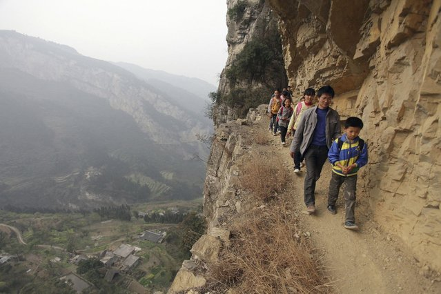Xu Liangfan, 37, escorts students on a cliff path as they make their way to Banpo Primary School in Guizhou province March 12, 2013. Located halfway up a mountain, the school has 68 students of which about 20 live in the nearby Gengguan village. Students from Gengguan have to edge their way along the narrow cliff path to go to class everyday, alongside Xu who would escort them. (Photo by Reuters/Stringer)