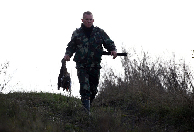 A hunter carries ducks he just killed during a hunt in a field near the village of Novosyolki, Belarus November 5, 2016. (Photo by Vasily Fedosenko/Reuters)