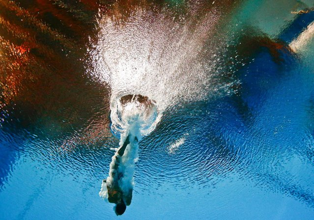 Tania Cagnotto of Italy is seen underwater during the women's 3m springboard semi final at the Aquatics World Championships in Kazan, Russia July 31, 2015. (Photo by Stefan Wermuth/Reuters)