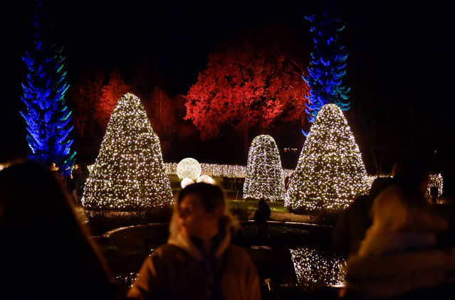 Visitors walk along illuminated objects during the Christmas Garden event at botanic garden in Berlin, Germany November 18, 2016. (Photo by Stefanie Loos/Reuters)