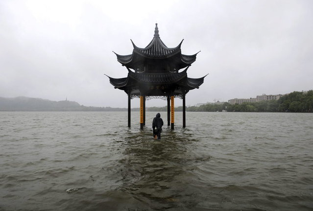 A man walks towards a flooded pavilion by the overflowing West Lake after Typhoon Fitow hit Hangzhou, Zhejiang province October 8, 2013. Four people were killed and hundreds of thousands evacuated after Typhoon Fitow hit eastern China, destroying houses and farmlands and closing ports and airports. (Photo by Lang Lang/Reuters)
