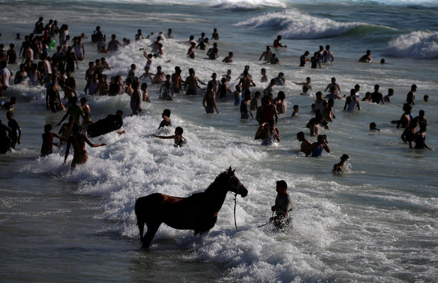 A horse is seen in the water as Palestinians swim to cool off in the Mediterranean Sea off the coast of Gaza City June 29, 2018. (Photo by Mohammed Salem/Reuters)