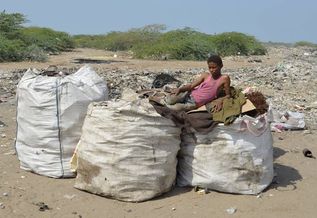 Boy rests on bags of recyclable waste at a rubbish dump outside Yemen's Red Sea port city of Houdieda January 19, 2016. (Photo by Abduljabbar Zeyad/Reuters)