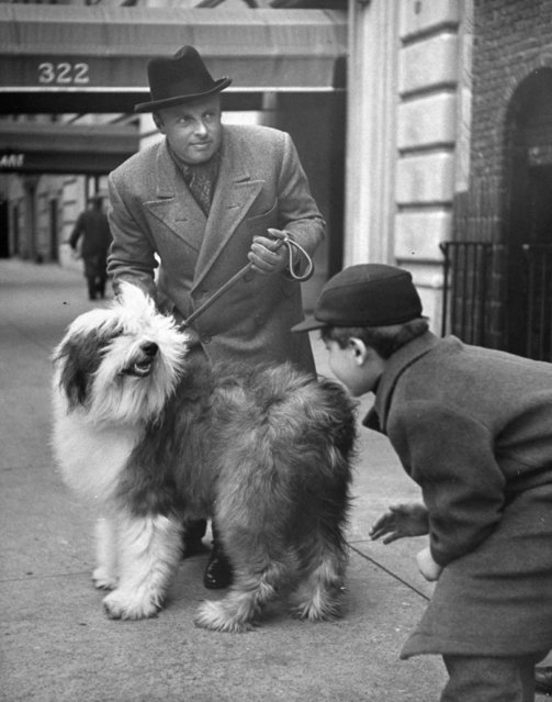Music conductor Andre Kostelanetz w. his sheep dog Puff getting attention fr. a young admirer on the street. (Photo by Nina Leen/Pix Inc./The LIFE Picture Collection/Getty Images)