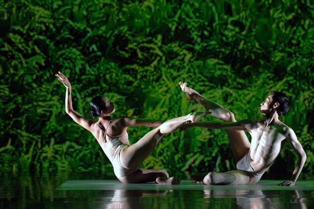 """Members of the Cloud Gate Dance Theater of Taiwan perform their new work """"Rice"""" during a rehearsal at the National Theater Concert Hall in Taipei, Taiwan, Thursday, November 21, 2013. """"Rice"""", which was created to celebrate Cloud Gate's 40th anniversary, is taken place around the country from Nov. 22, 2013 to Jan. 9, 2014. (Photo by Chiang Ying-ying/AP Photo)"""