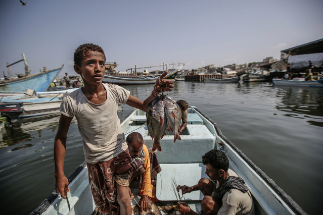 In this September 29, 2018, photo, a boy holds the catch of the day on a boat at the main fishing port, in Hodeida, Yemen. (Photo by Hani Mohammed/AP Photo)