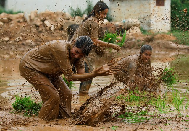 Participants play in the mud as they plant rice samplings during National Paddy Day, also called Asar Pandra, that marks the commencement of rice crop planting in paddy fields as monsoon season arrives, in Dhading, Nepal, June 30, 2019. (Photo by Navesh Chitrakar/Reuters)