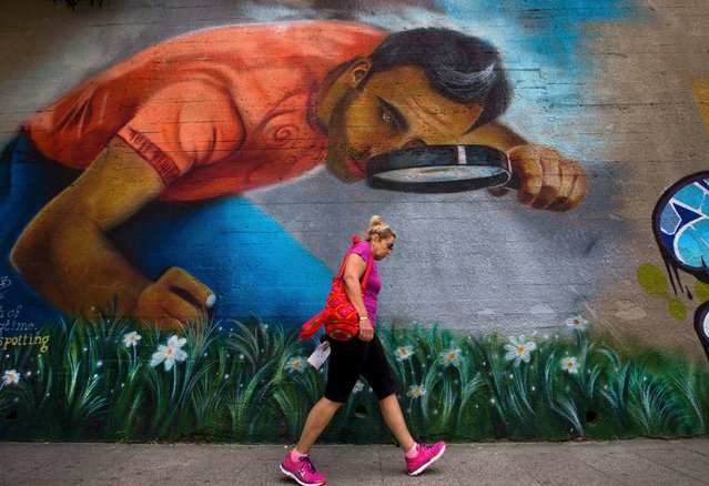 A woman walks past graffiti in Beirut, Lebanon, Wednesday, May 4, 2016. Graffiti artists have been trying to re-engage disillusioned youth in a debate about the country's latest wave of political turmoil. (Photo by Hassan Ammar/AP Photo)