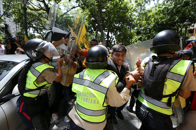 Conrado Perez (C), deputy of the Venezuelan coalition of opposition parties (MUD), carries a chicken while clashing with riot police during a protest outside the offices of the Venezuela's ombudsman in Caracas, Venezuela on April 3, 2017. (Photo by Carlos Garcia Rawlins/Reuters)