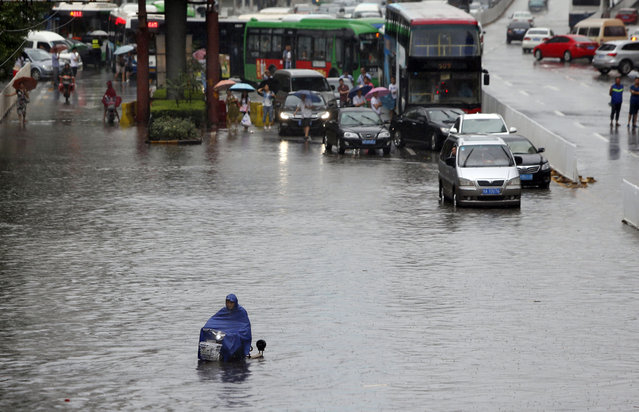 A man on a scooter rides through flood waters after downpours in Wuhan, in central China's Hubei province Thursday, July 23, 2015. (Photo by Chinatopix Via AP Photo)