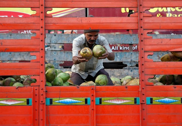 A man unloads coconut from a supply truck at a market in Ahmedabad, November 21, 2019. (Photo by Amit Dave/Reuters)
