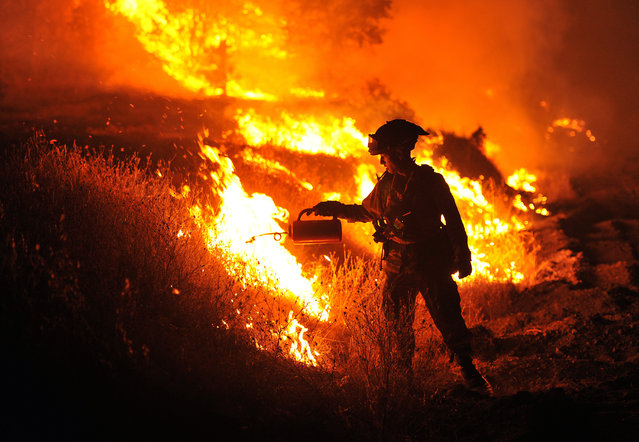 CalFire firefighter Bo Santiago lights a backfire as the Rocky fire burns near Clearlake, Calif., on Monday, August 3, 2015. The fire has charred more than 60,000 acres and destroyed at least 24 residences. (Photo by Josh Edelson/AP Photo)