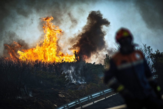 Firefighter shout as they try to extinguish a forest fire in Vila nova de Cerveira, northern Portugal, 09 August 2015. 163 firemen and 51 fire engines battling the flames and assisted by four water-bombing aircraft. (Photo by Goncalo Delgado/EPA)