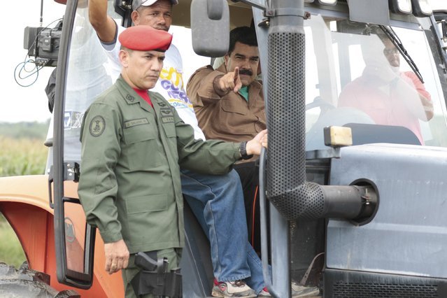 Venezuela's President Nicolas Maduro (C) greets supporters from a tractor, during his visit to a corn plantation in the state of Cojedes, in this handout picture provided by Miraflores Palace on August 12, 2015. (Photo by Miraflores Palace/Reuters)