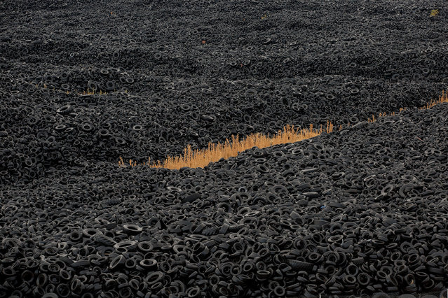 Mountains of used tires lay on a dump in the countryside on September 24, 2014 in Sesena Nuevo, near Madrid, Spain. Used tyres dump site in Sesena is a major environmental problem and was declared ilegal back in 2003, It currently stores over 75.000 tonnes of tires. The company, which ran it, received many penalties had to leave. (Photo by Pablo Blazquez Dominguez/Getty Images)