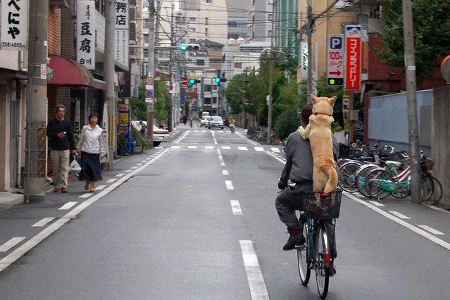 """Do(g)scene"". September 29, 2007, Osaka. (Photo by Takato Marui)"