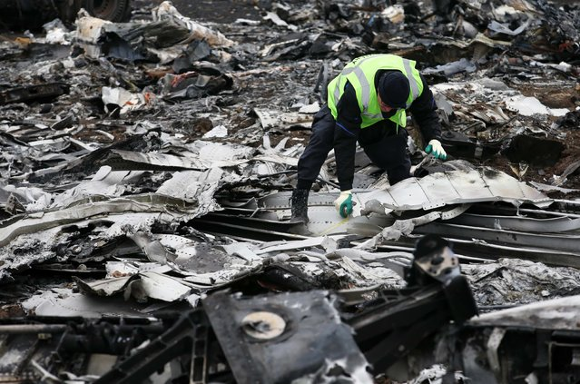 A Dutch investigator works at the site where the downed Malaysia Airlines flight MH17 crashed, near the village of Hrabove (Grabovo) in Donetsk region, eastern Ukraine November 16, 2014. (Photo by Maxim Zmeyev/Reuters)