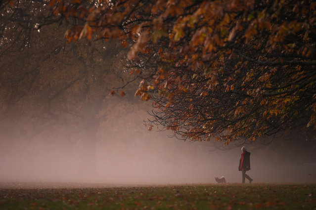 A person walks their dog in the morning mist at sunrise in Greenwich Park in south London on November 9, 2020. (Photo by Daniel Leal-Olivas/AFP Photo)