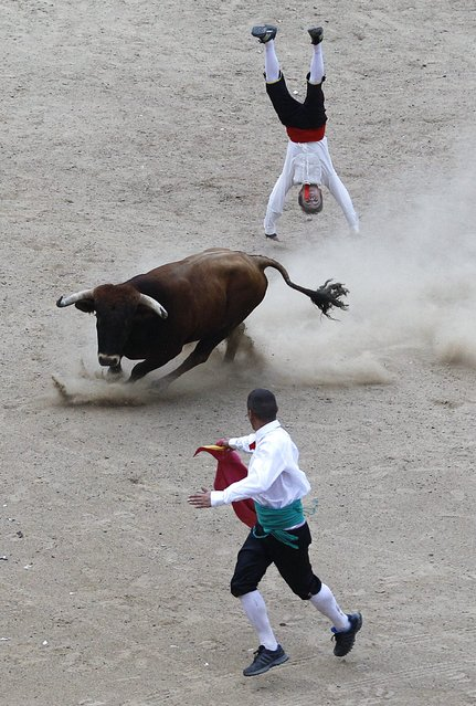 A Spanish recortadore jumps over a bull during a show in Cali December 21, 2014. (Photo by Jaime Saldarriaga/Reuters)
