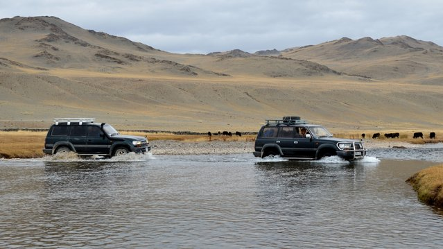 Land Cruisers drove through a river in western Mongolia. (Photo by Brad Ruoho/The Star Tribune)