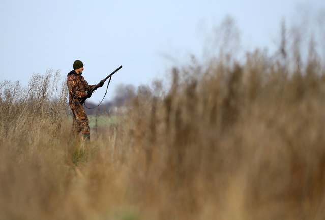A hunter takes part a hunt in a field near the village of Novosyolki, Belarus November 5, 2016. (Photo by Vasily Fedosenko/Reuters)