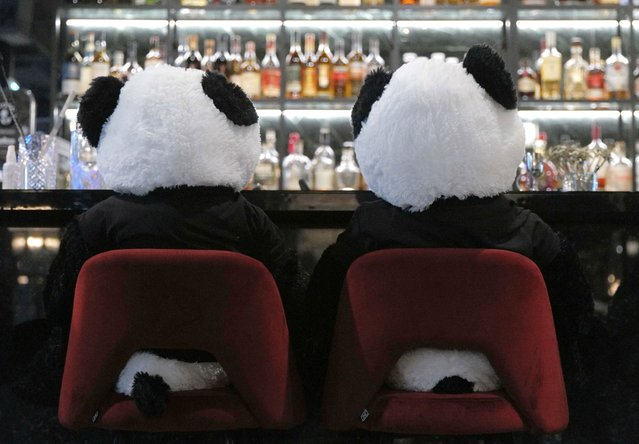 """Fluffy toy panda bears as part of the art installation """"Panda mie"""" by Italian restaurant owner Giuseppe """"Pino"""" Fichera sit over beers at his restaurant """"Pino's"""" to raise awareness of the COVID-19 lockdown's business impact on gastronomy in Frankfurt, Germany, November 24, 2020. (Photo by Kai Pfaffenbach/Reuters)"""