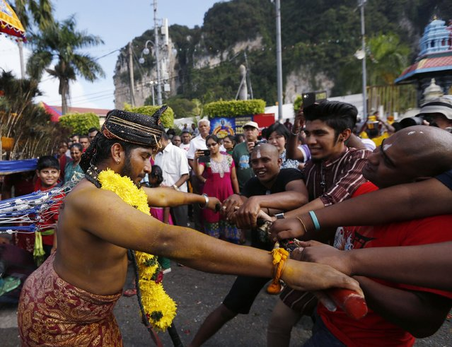 A Hindu devotee pulls a chariot with hooks, which are pierced into his back, during his pilgrimage to the Batu Caves temple during Thaipusam in Kuala Lumpur February 3, 2015. (Photo by Olivia Harris/Reuters)