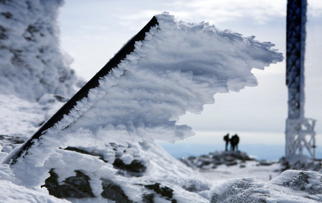 In this Tuesday, March 10, 2015 photo, rime ice extends horizontally from a metal pole at the summit of Mt. Washington, in New Hampshire. Rime ice forms in the direction of the wind driven fog that often blows across the summit at hurricane force. (Photo by Robert F. Bukaty/AP Photo)