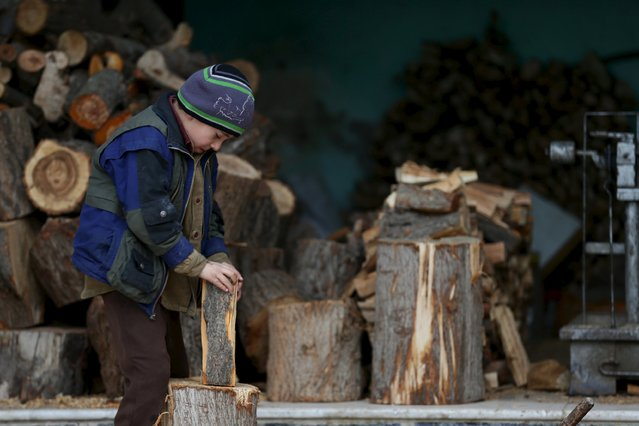 A boy inspects a firewood in the town of Douma, eastern Ghouta in Damascus, Syria January 5, 2016. Picture taken January 5, 2016. (Photo by Bassam Khabieh/Reuters)