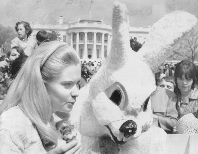 April 4, 1972, Bunny Talk: The President's daughter, Tricia Nixon Cox, has a word with a huge white rabbit during an appearance Monday at the traditional White House Easter Egg Roll. The rabbit was said to be one of the president staff members. (Photo by AP Photo)