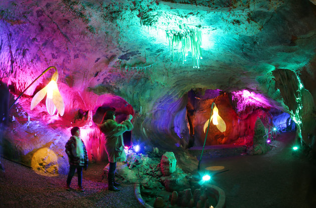 """A visitor takes a picture of the illuminated Dechen Cave in Iserlohn, Germany, February 27, 2016. The """"2016 Cave Lights"""" event will showcase light installations featuring stalactite and stalagmite formations in the Dechen Cave until March 25. (Photo by Ina Fassbender/EPA)"""