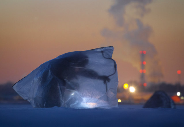 A man covered with plastic bag for protection from the wind and cold, fishes through an ice hole in the Finnish Gulf west of St.Petersburg, Russia, Tuesday, March 1, 2016. (Photo by Dmitri Lovetsky/AP Photo)