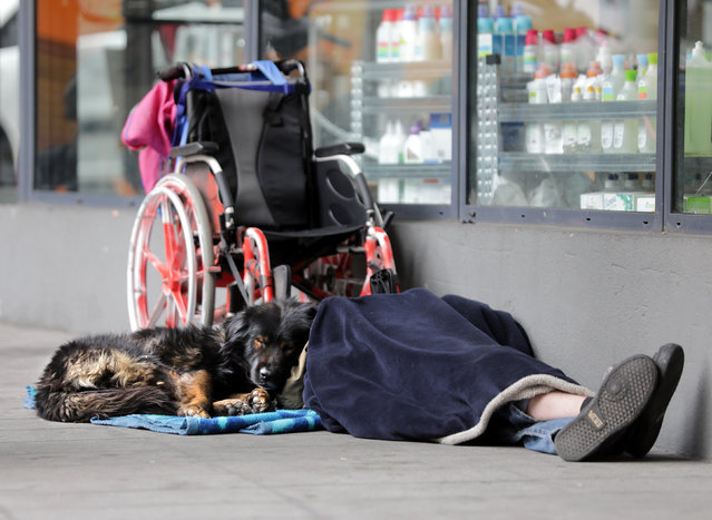A homeless man and his dog sleep on the pavement in Nice, as cold winter temperatures continue in France, January 26, 2017. (Photo by Eric Gaillard/Reuters)