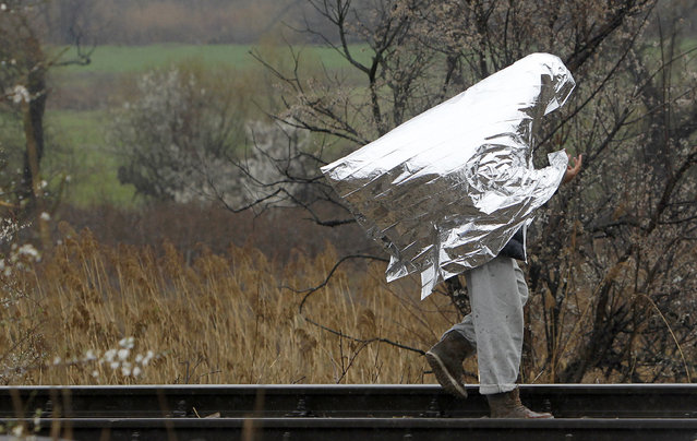 A man covered with thermal blanket walks along railway tracks beside an improvised refugee camp on the border line between Macedonia and Serbia near the northern Macedonian village of Tabanovce, Thursday, March 10, 2016. Around 1.500 migrants and refugees are stranded at Tabanovce transit center for refugees in northern Macedonia. (Photo by Boris Grdanoski/AP Photo)