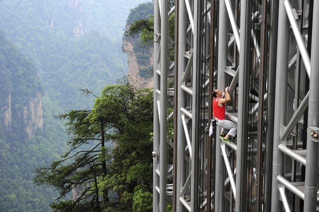 France's daredevil climber Jean-Michel Casanova climbs the Bailong Elevator near a cliff in China's Hunan province. (Photo by Reuters/China Daily)