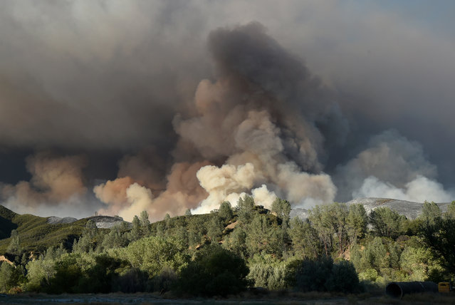 A plume of smoke rises above a hillside as the Rocky Fire burns near Clearlake, Calif., on Monday, August 3, 2015. (Photo by Josh Edelson/AP Photo)