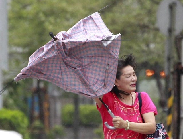 A woman holds her umbrella while walking against strong wind in Taipei as Typhoon Soudelor hits Taiwan August 8, 2015. (Photo by Pichi Chuang/Reuters)