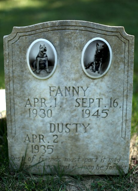 """The headstone and tile photos of """"Fanny"""" and """"Dusty"""" are seen at the Aspin Hill Memorial Park in Aspen Hill, Maryland August 25, 2015. (Photo by Gary Cameron/Reuters)"""