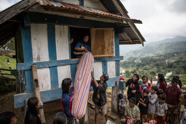 Family members put out a body of deceased from a Patane during Manene ritual on August 13, 2014 in Toraja, South Sulawesi, Indonesia. The Manene ritual involves changing the clothes every three years of mummified ancestors to honor love for the deceased in Barrapu Village. The ritual is held before the planting season arrives or before August ends. (Photo by Agung Parameswara/Getty Images)