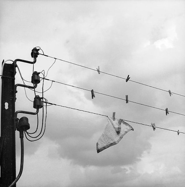 Humour Photography By Rene Maltete