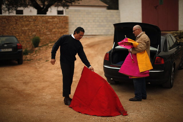"Spanish former bullfighter Jose Antonio Campuzano (L) performs a pass with a ""muleta"", a stick that the red cloth hangs from in the final third of a bullfight, before the start of a ""tentadero"" (a small bullfight to check the bravery of calves and heifers which are not killed) during the first International Biennial of bullfighting at Reservatauro Ronda cattle ranch in Ronda, near Malaga February 17, 2013. Spain's parliament voted on February 12 to consider protecting bullfighting as a national pastime, angering animal rights campaigners and politicians in two regions where the sport is banned. (Photo by Jon Nazca/Reuters)"