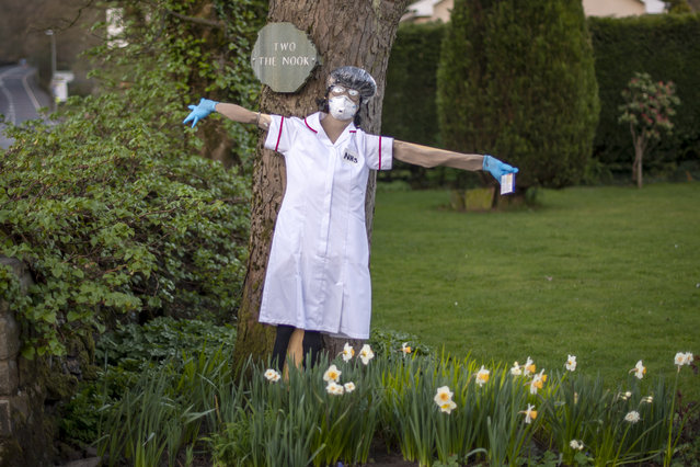 Residents display scarecrows with an NHS theme outside their homes in Greenfield for the annual scarecrow parade on April 09, 2020 in Manchester, United Kingdom. There have been around 60,000 reported cases of the COVID-19 coronavirus in the United Kingdom and 7,000 deaths. The country is in its third week of lockdown measures aimed at slowing the spread of the virus. (Photo by Anthony Devlin/Getty Images)